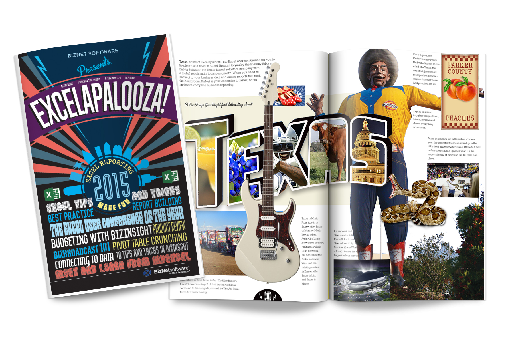 Excelapalooza Program Design